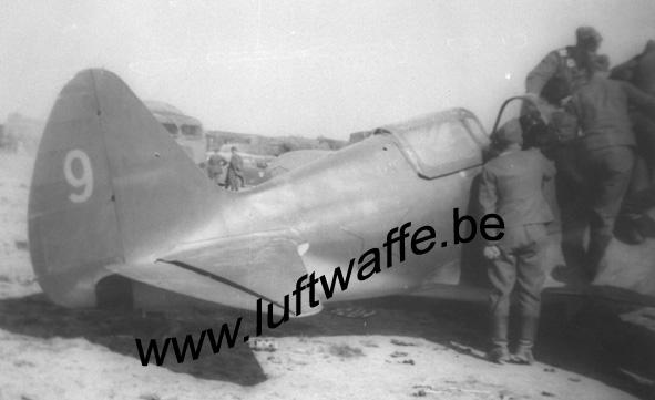 SP-II.JG 54 (2) (WL373)