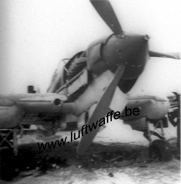 SP-Il-2 (1) (WL25)