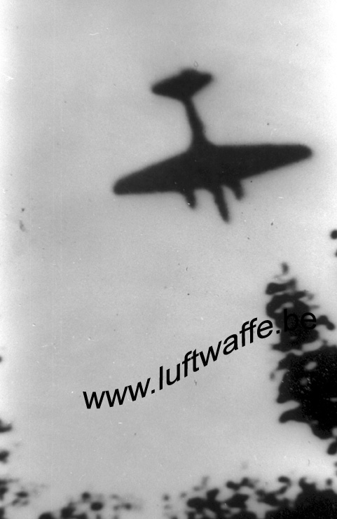 SP-Lemberg. July 41 (2) (WL426)