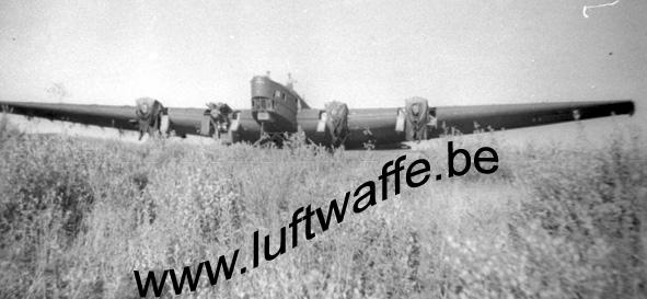 SP-TB-3 (WL317)